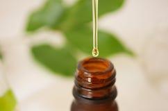 Producto natural del skincare de la belleza para calificar con el orgánico en Imagenes de archivo