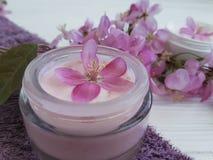 Producto orgánico de la salud de la protección de la relajación de la belleza del tratamiento cosmético poner crema del balneario Fotografía de archivo libre de regalías
