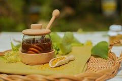 Producto sano del panal de la abeja, polen, propóleos, concepto de la miel Imagen de archivo