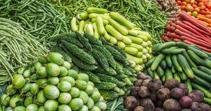 Producto-vehículos frescos de vegetables Foto de archivo libre de regalías