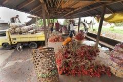 Productor del Rambutan Foto de archivo libre de regalías