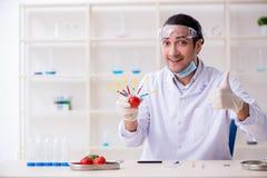 Productos alimenticios expertos de la prueba de la nutrición masculina en laboratorio imagenes de archivo