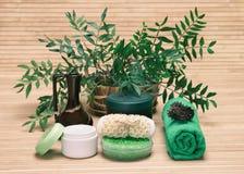 Productos cosméticos naturales Fotos de archivo libres de regalías
