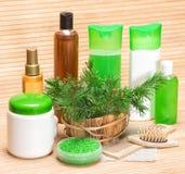 Productos cosméticos y accesorios del cuidado del cabello natural Fotografía de archivo