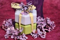 Productos de belleza. Cosméticos Imágenes de archivo libres de regalías