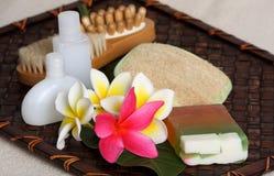Productos de belleza tropicales del balneario del día Fotos de archivo libres de regalías