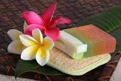 Productos de belleza tropicales del balneario del día Imagenes de archivo