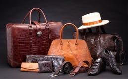 Productos de cuero de la manera del cocodrilo Foto de archivo