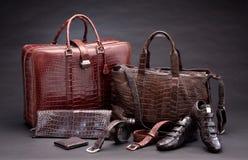Productos de cuero de la manera del cocodrilo Fotografía de archivo