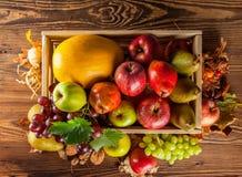 Productos de la agricultura del otoño en la madera Imagen de archivo