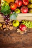Productos de la agricultura del otoño en la madera Imágenes de archivo libres de regalías