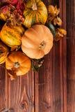Productos de la agricultura del otoño en la madera Foto de archivo libre de regalías