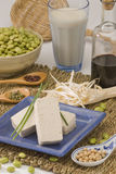 Productos de la soja Fotografía de archivo