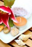 Productos de la terapia del masaje Fotos de archivo libres de regalías