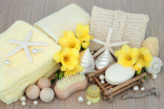 Productos de limpiamiento de la belleza del balneario Foto de archivo