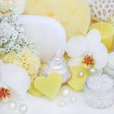 Productos de limpiamiento del tratamiento de la belleza Foto de archivo libre de regalías