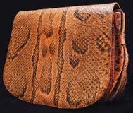 Productos de un cocodrilo y de una serpiente Fotografía de archivo libre de regalías