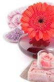 Productos del balneario Imagen de archivo libre de regalías