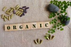 Medicina herbaria orgánica Imagen de archivo libre de regalías