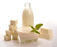 Productos lácteos Imágenes de archivo libres de regalías