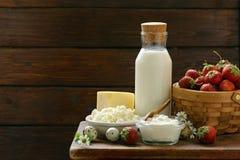 Productos lácteos aún de la vida rústica - requesón, crema agria Fotografía de archivo libre de regalías