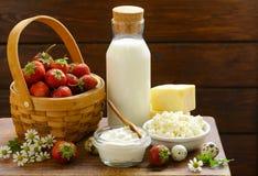Productos lácteos aún de la vida rústica - requesón, crema agria, queso Fotos de archivo libres de regalías