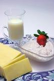 Productos lácteos con poca grasa Foto de archivo libre de regalías