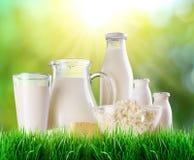 Productos lácteos en la hierba Imágenes de archivo libres de regalías