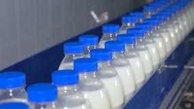 Productos lácteos frescos, botellas que mueven encendido un transportador Planta de los productos lácteos
