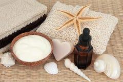 Productos naturales de Skincare Imágenes de archivo libres de regalías