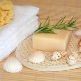 Productos naturales de Skincare Fotografía de archivo libre de regalías