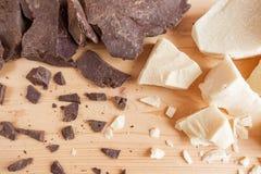 Productos naturales del cacao Ingredientes del chocolate: sólidos del cacao y primer del aceite del cacao Imágenes de archivo libres de regalías