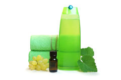 Productos naturales para el cuidado del cabello Imágenes de archivo libres de regalías