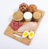 Productos naturales que contienen las proteínas de la planta y del animal Foto de archivo libre de regalías