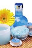 Productos para el balneario y aromatherapy Fotografía de archivo