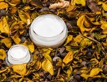 Productos para el cuidado de la piel orgánicos Fotografía de archivo