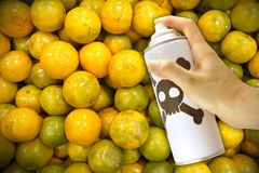 Productos químicos tóxicos que pintan (con vaporizador) en las naranjas Fotografía de archivo libre de regalías