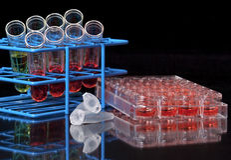 Productos químicos y tubos clasificados Imágenes de archivo libres de regalías