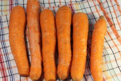 Products with carotene. Washed fresh carrots on a fabric texture. soft focus Royalty Free Stock Photo