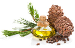 Products of cedar tree. Royalty Free Stock Photography