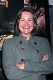 Cherry Jones Royalty Free Stock Images