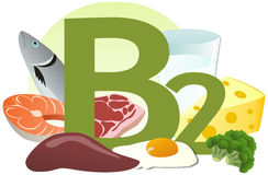 Products containing vitamin B2. The products containing vitamin B2 Royalty Free Stock Photos