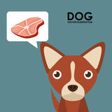 Products for dogs Stock Image