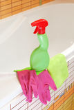 Products for household cleaning bathrooms Stock Image