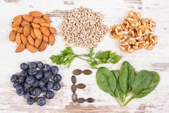 Products and ingredients containing vitamin E and dietary fiber, healthy nutrition concept. Products or ingredients containing vitamin E and dietary fiber stock photography