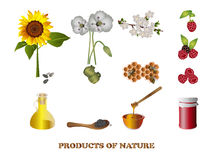 Products of nature Stock Photography