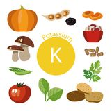 Products rich with potassium. A set of organic organic foods with a high mineral content Stock Illustration