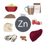 Products rich with zinc. A set of organic organic foods with a high content of vitamin Stock Illustration