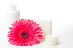 Products for spa, body care and hygiene. Composition of products for spa, body care and hygiene on a white background Stock Photo