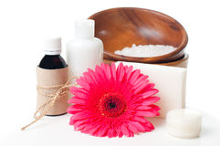 Products for spa, body care and hygiene. Composition of products for spa, body care and hygiene on a white background Royalty Free Stock Photos